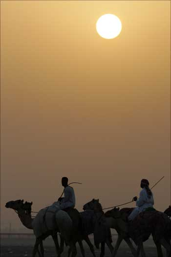 Camel jockeys train under the morning sun at Nad al-Sheba race track in Dubai, Saudi Arabia.